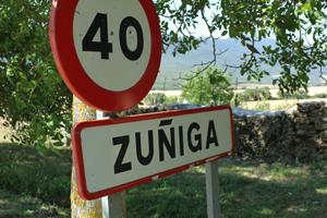 zuniga6